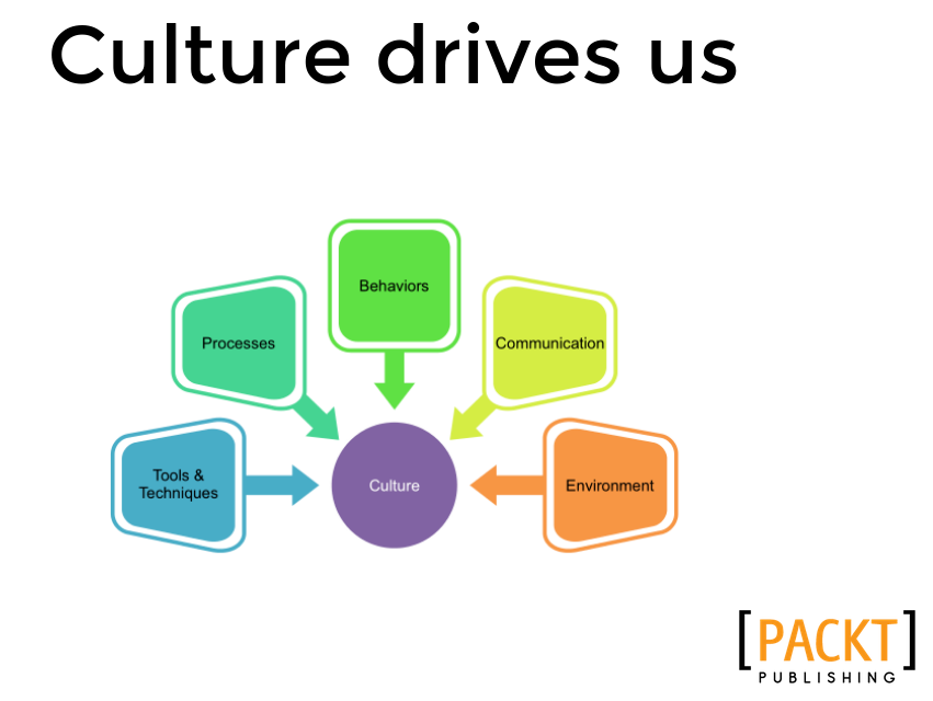 DevOps Culture Drives Us